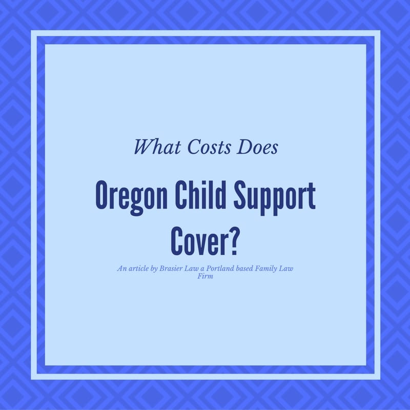 What does the child support cover anyway?